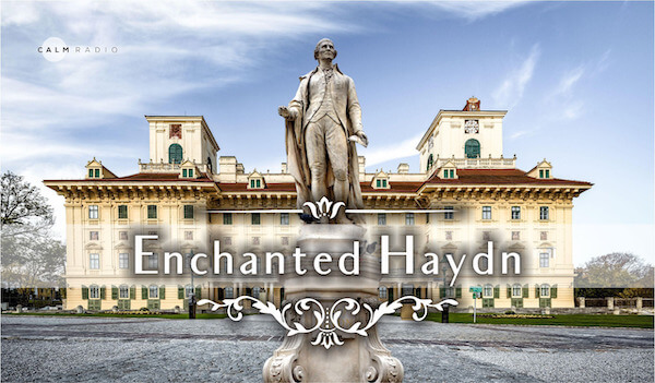 ENCHANTED HAYDN