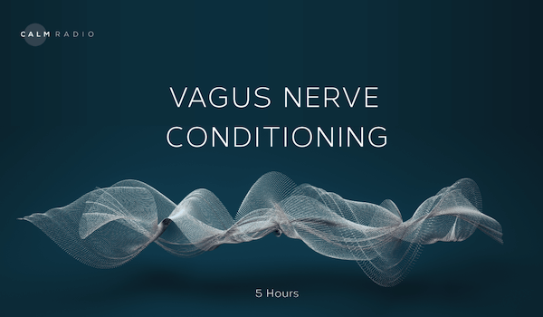 VAGUS NERVE CONDITIONING